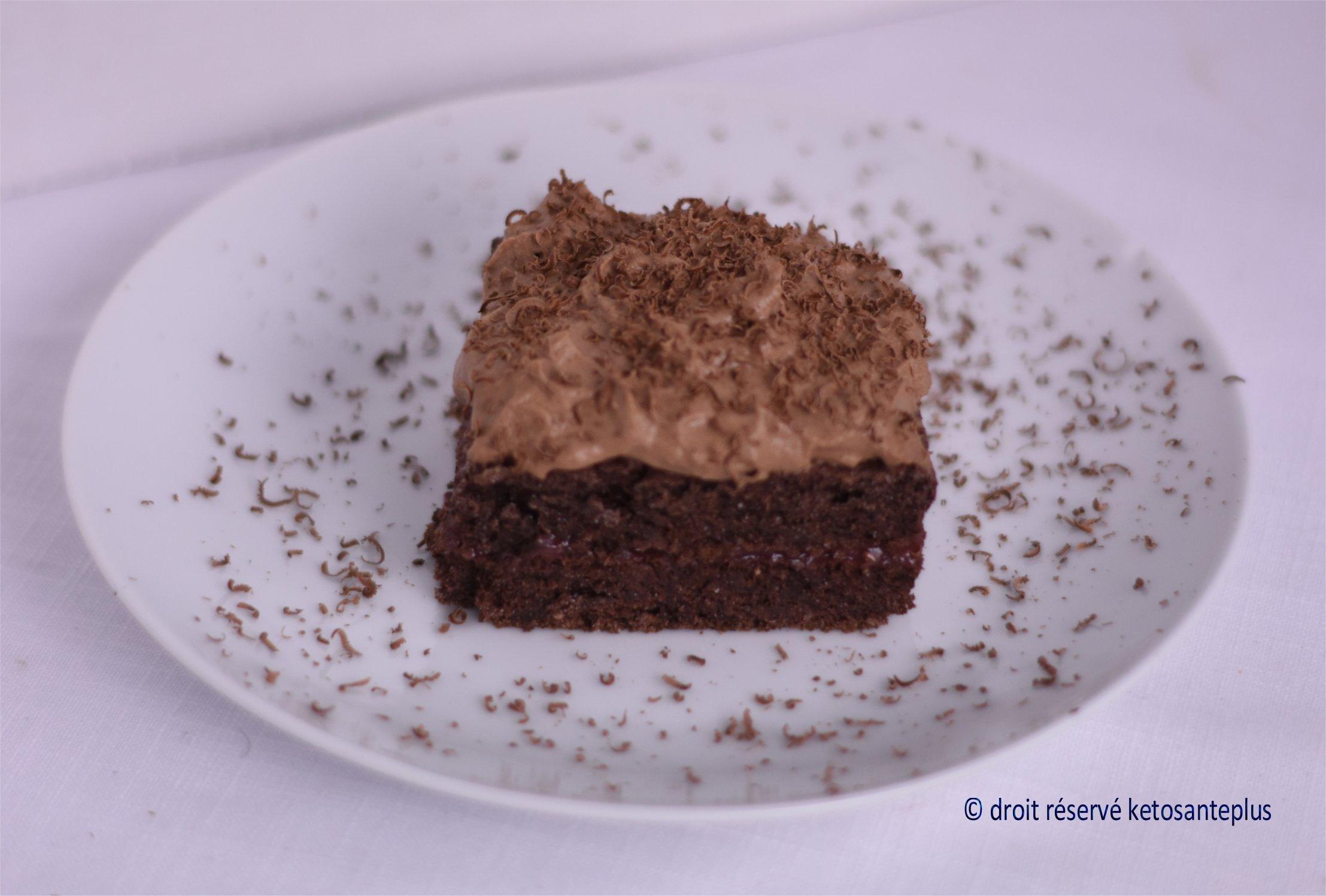Gâteau au chocolat farine de coco